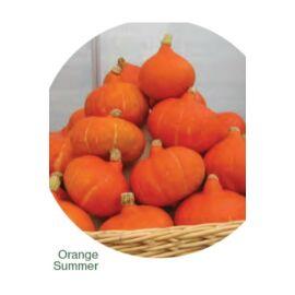 Orange Summer sütőtök vetőmag 250 szem