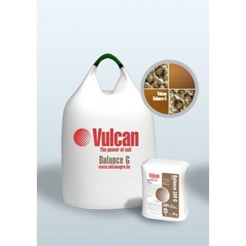 Vulcan Balance GS 20 Kg